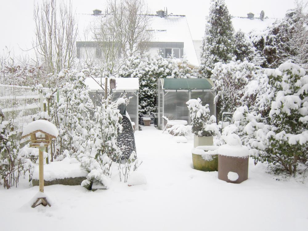 tips winterizing yard fall